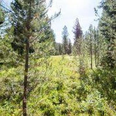 McCall Residential Lots & Land For Sale: 32 Vernon Court