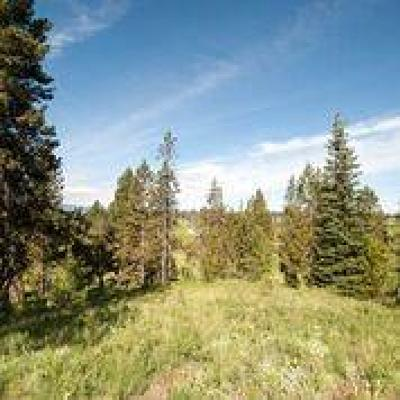 McCall Residential Lots & Land For Sale: 28 Vernon Court