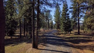 McCall Residential Lots & Land For Sale: 36 Vernon Court