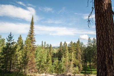 McCall Residential Lots & Land For Sale: 44 Vernon Court