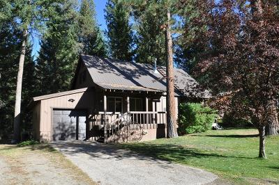 McCall Single Family Home For Sale: 443 Smitty Avenue
