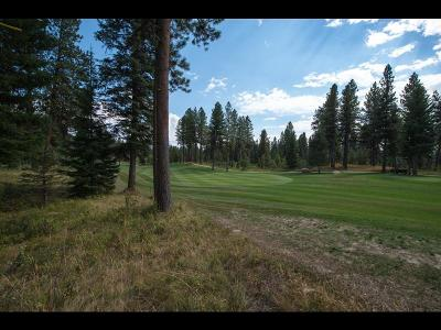 McCall Residential Lots & Land For Sale: 136 Whitetaill Drive