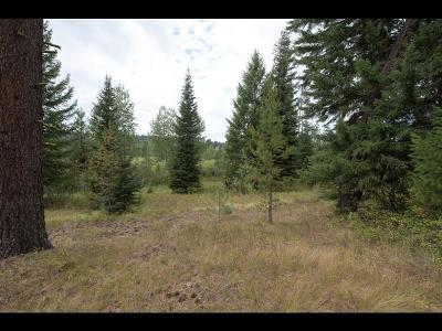 McCall Residential Lots & Land For Sale: 2008 Fox Fairway Court