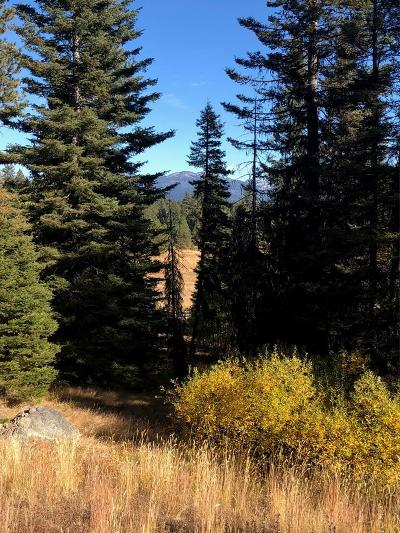 McCall Residential Lots & Land For Sale: 4629 Williams Creek Loop