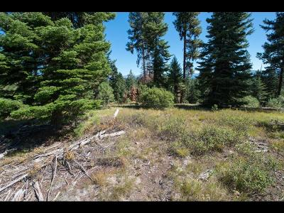 McCall Residential Lots & Land For Sale: 4634 Williams Creek Loop