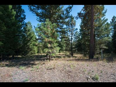 McCall Residential Lots & Land For Sale: 5545 Lupine Lane