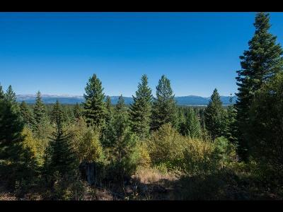 McCall Residential Lots & Land For Sale: 5513 Lupine Lane