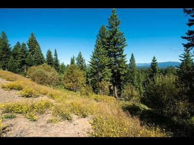 McCall Residential Lots & Land For Sale: 5509 Lupine Lane