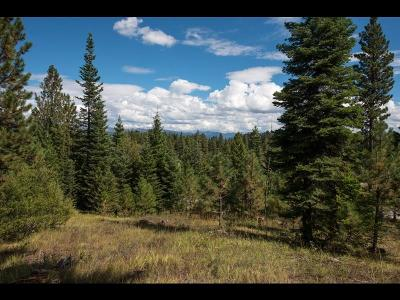 McCall Residential Lots & Land For Sale: 4320 Song Sparrow Drive