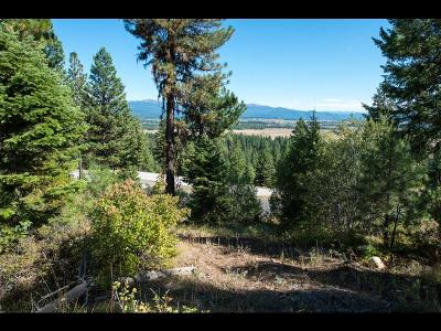 McCall Residential Lots & Land For Sale: 548 Osprey View Drive