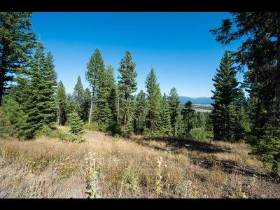 McCall Residential Lots & Land For Sale: 611 Lichen Lane