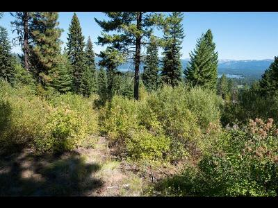 McCall Residential Lots & Land For Sale: 661 Migratory Ridge
