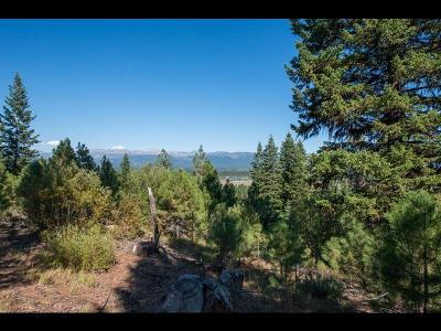 McCall Residential Lots & Land For Sale: 5617 Appaloosa Trail