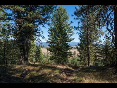 McCall Residential Lots & Land For Sale: 5609 Appaloosa Trail