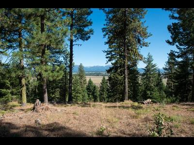 McCall Residential Lots & Land For Sale: 5603 Appaloosa Trail