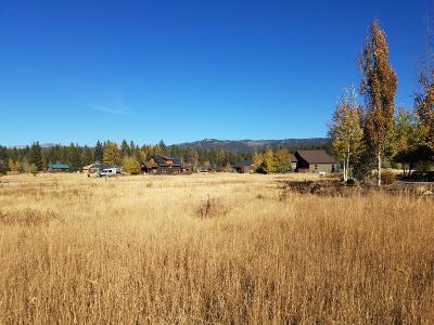 McCall Residential Lots & Land For Sale: 1037 Kaitlyn Loop