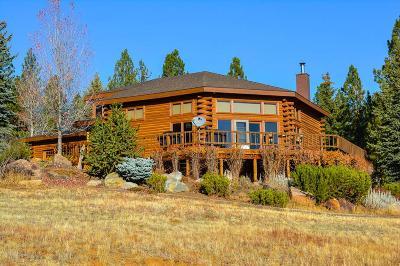 New Meadows Single Family Home For Sale: 2984 Syringa Drive