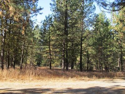 Cascade Residential Lots & Land For Sale: 29 Mountain View Lane