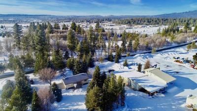 McCall ID Single Family Home For Sale: $899,000