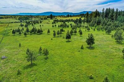 McCall Residential Lots & Land For Sale: 1217 Elo Road