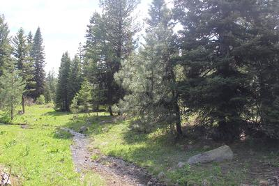 McCall Residential Lots & Land For Sale: 1925 Bear Basin Road