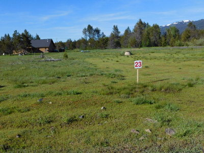 Donnelly Residential Lots & Land For Sale: 161 Meadow Place