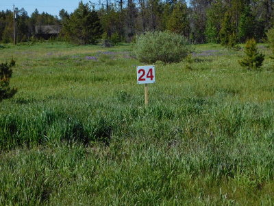 Donnelly Residential Lots & Land For Sale: 163 Meadow Place