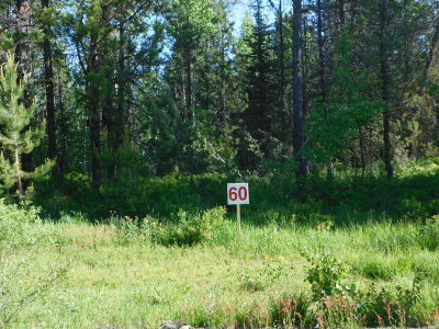 Donnelly Residential Lots & Land For Sale: 170 Grassy Place