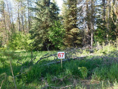 Donnelly Residential Lots & Land For Sale: 169 Boulder Place