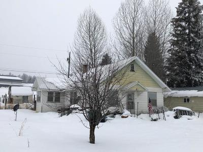 Cascade Single Family Home For Sale: 205 N Idaho Street