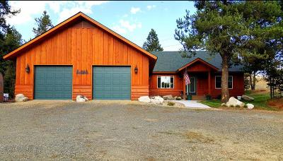 Cascade, Donnelly, Mccall, New Meadows Single Family Home For Sale: 150 Current Drive