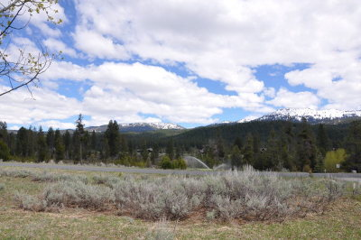 McCall Residential Lots & Land For Sale: 231 Cold Creek Court