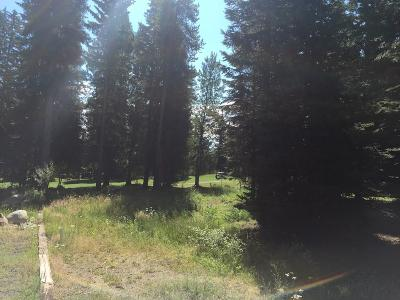 McCall Residential Lots & Land For Sale: Lot 28 Eagle Drive