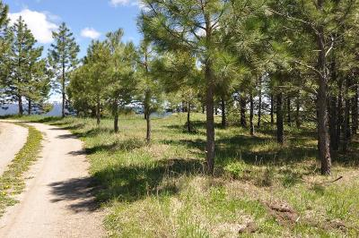 McCall Residential Lots & Land For Sale: Tbd Nisula Road