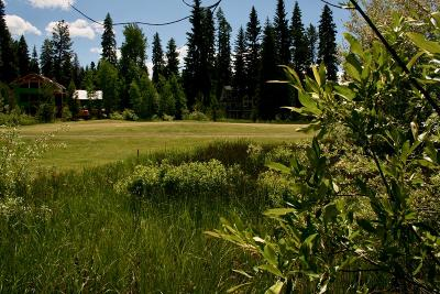 Residential Lots & Land For Sale: 224 Meadow Lake Court