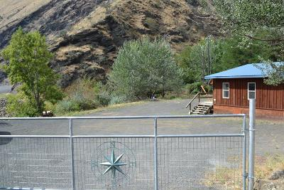 Riggins ID Single Family Home For Sale: $175,000
