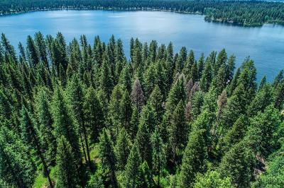 McCall Residential Lots & Land For Sale: Tbd Edgemere Lane