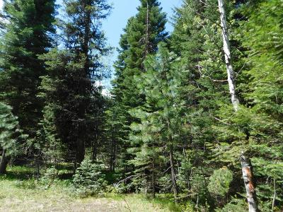 Donnelly Residential Lots & Land For Sale: 12825 Chuckwagon Road