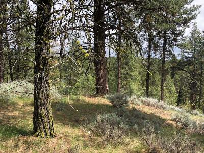 Cascade Residential Lots & Land For Sale: 1497 Crown Point Parkway