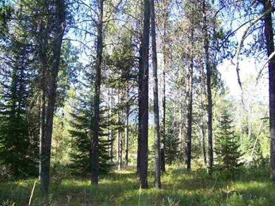 Donnelly Residential Lots & Land For Sale: 15 Spring Water Court