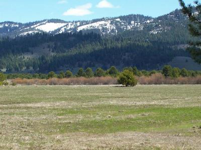 Cascade Residential Lots & Land For Sale: 10184 Packsaddle Road