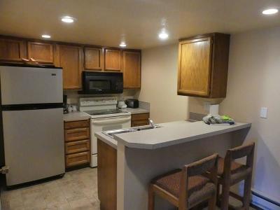 McCall Single Family Home For Sale: 1607 E16 Davis Avenue #E-16