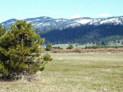 Cascade Residential Lots & Land For Sale: 10198 Packsaddle Road