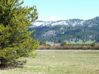Cascade Residential Lots & Land For Sale: 10202 Packsaddle Road