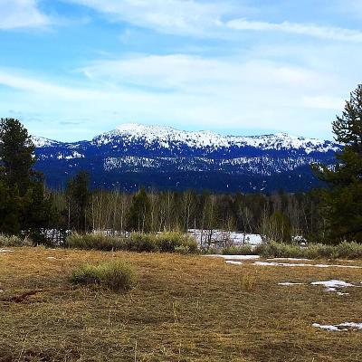 McCall Residential Lots & Land For Sale: Lot 149 Easy Street