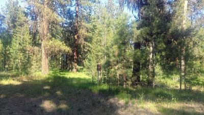 McCall Residential Lots & Land For Sale: 117 Morgan Drive
