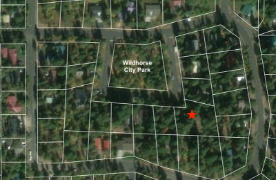 McCall Residential Lots & Land For Sale: 914 Wildhorse Drive