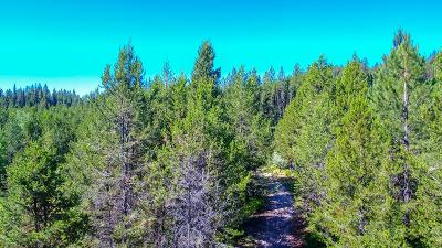 Cascade Residential Lots & Land For Sale: Tbd3 Horsethief Road