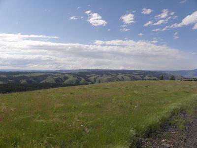 Residential Lots & Land For Sale: 37 Pilgrim Ridge Road