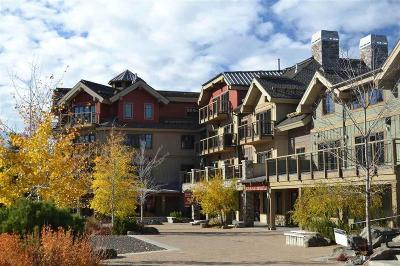 McCall Condo/Townhouse For Sale: 616 3rd Street #205